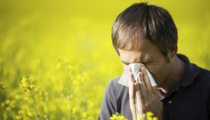 allergy immunology md salaries